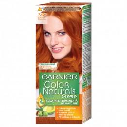 Garnier Color  Naturals   Б